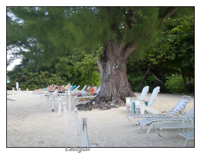 Gran Cayman-dscn4707-jpg
