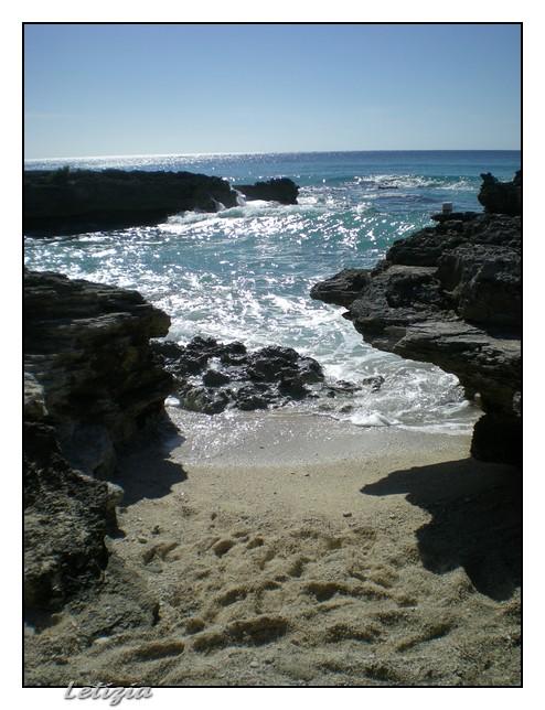 Gran Cayman-dscn4726-jpg