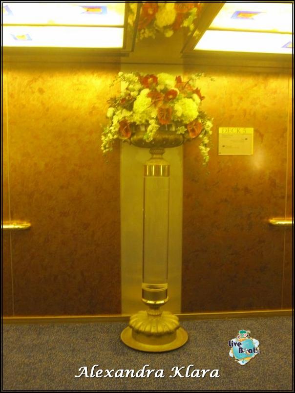 Galleria Crest Ryndam-foto-crest-nave-ryndam-13-jpg