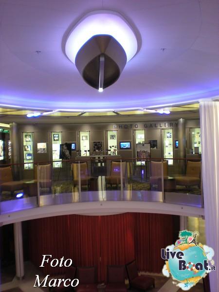 L'Entertainment Court di Celebrity Silhouette-72foto-liveboat-celebrity-silhouette-jpg