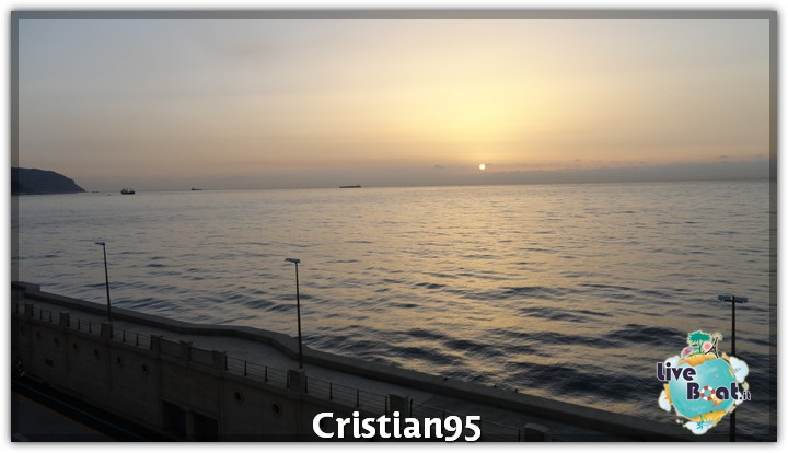 10/10/12 - St. Cruz de Tenerife, Canarie-tenerife-loro-parque-2-jpg