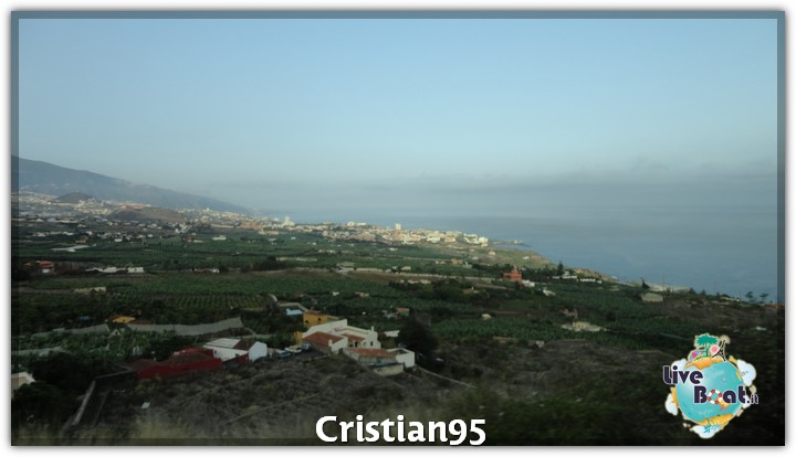 10/10/12 - St. Cruz de Tenerife, Canarie-tenerife-loro-parque-4-jpg