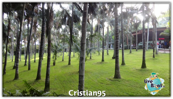 10/10/12 - St. Cruz de Tenerife, Canarie-tenerife-loro-parque-7-jpg