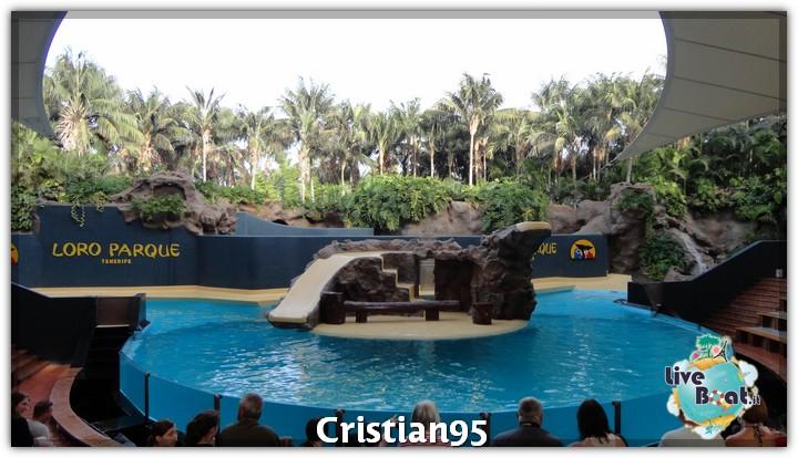 10/10/12 - St. Cruz de Tenerife, Canarie-tenerife-loro-parque-11-jpg