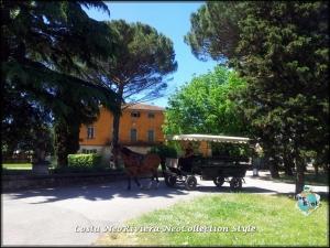 Tenuta A Cenaia Livorno