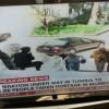 Arrentato crocieristi a Tunisi