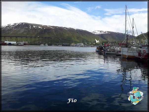 Escursione a Tromso e centro Polaria (27)