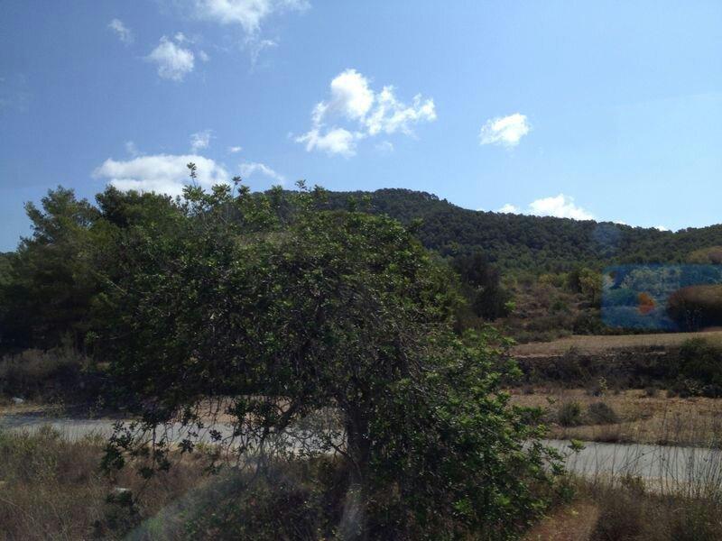 2014/07/31 Ibiza, Spain-uploadfromtaptalk1406798860555-jpg