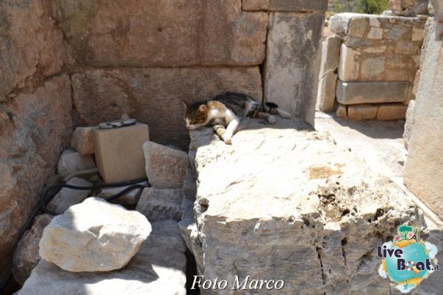 Cosa visitare a Kusadasi (Efeso) -Turchia--63foto-liveboat-jpg