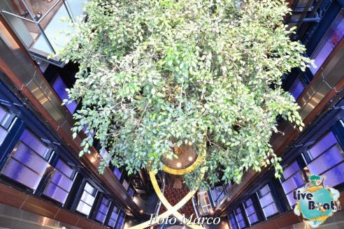 Grand Foyer di  Celebrity Silhouette-23foto-liveboat-celebrity_silhouette-jpg