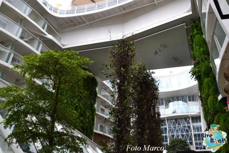 -8foto-oasis-of-the-seas-royal-caribbean-central-park-oasis-of-the-seas-jpg