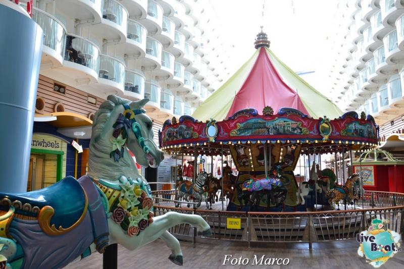 -15foto-oasis-of-the-seas-royal-caribbean-central-park-oasis-of-the-seas-jpg