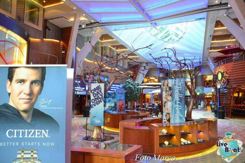 -13foto-oasis-of-the-seas-royal-caribbean-central-park-oasis-of-the-seas-jpg