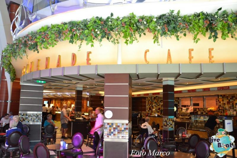 -35foto-oasis-of-the-seas-royal-caribbean-central-park-oasis-of-the-seas-jpg