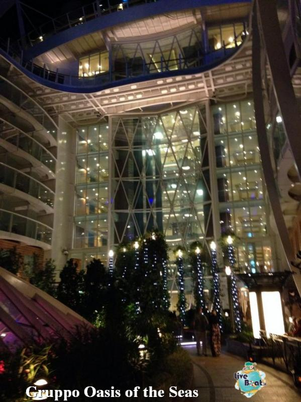 2014/09/22 Oasis of the seas in navigazione-58-foto-oasis-of-the-seas-navigazione-diretta-liveboat-crociere-jpg