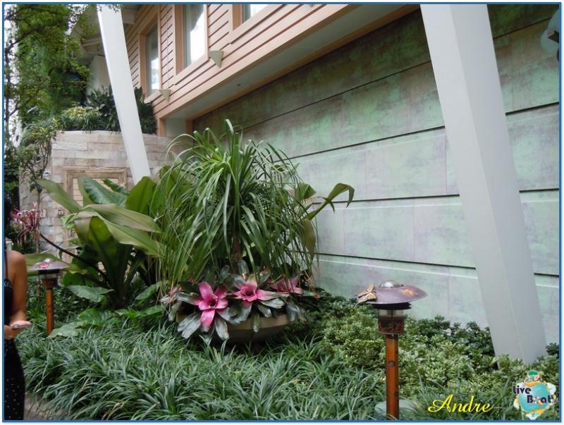 -2-royal-caribbean-oasis-central-park-jpg