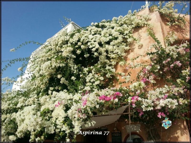 2014/10/17 Santorini Costa Fascinosa-escursione-santorini-fira-diretta-liveboat-47-jpg