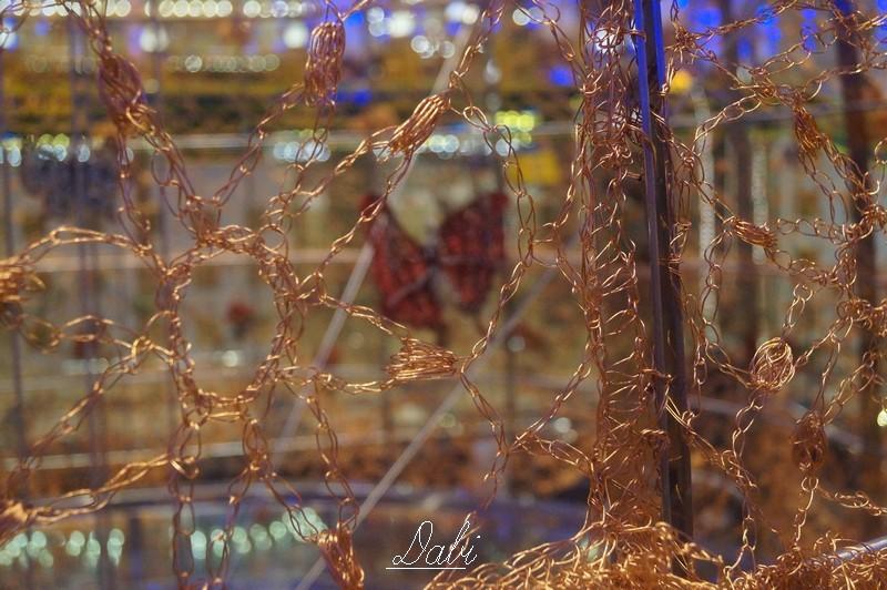 Fotorecensione COSTA DIADEMA 01-07.11.2014-4costa-diadema-vernissage-jpg