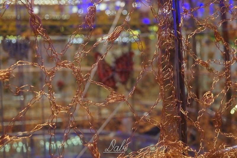 Fotorecensione COSTA DIADEMA 01-07.11.2014-5costa-diadema-vernissage-jpg