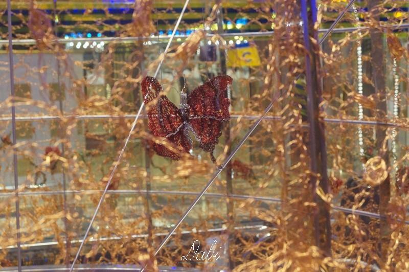 Fotorecensione COSTA DIADEMA 01-07.11.2014-6costa-diadema-vernissage-jpg