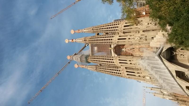 2014/11/22-Costa Fortuna-Verde Lime-uploadfromtaptalk1416757246799-jpg