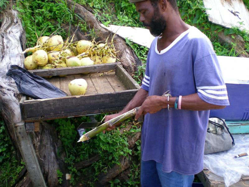 Cosa visitare a Grenada-dscn1082-jpg