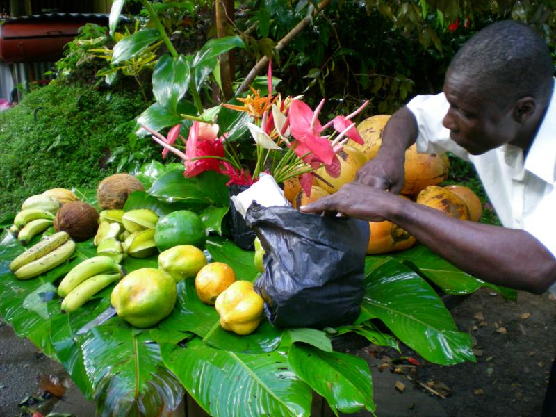 Cosa visitare a Dominica-dscn1225-jpg