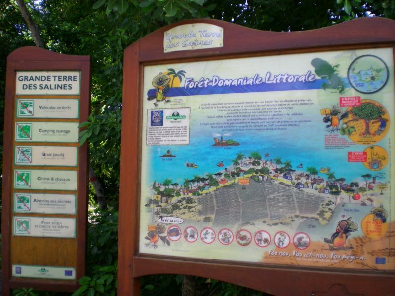 Cosa visitare a Martinica-dscn1202-jpg