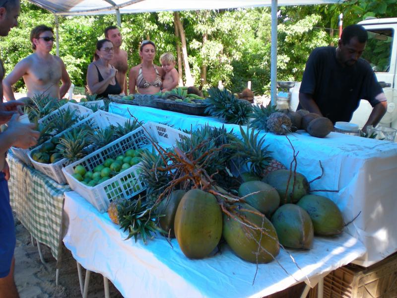 Cosa visitare a Martinica-dscn1175-jpg