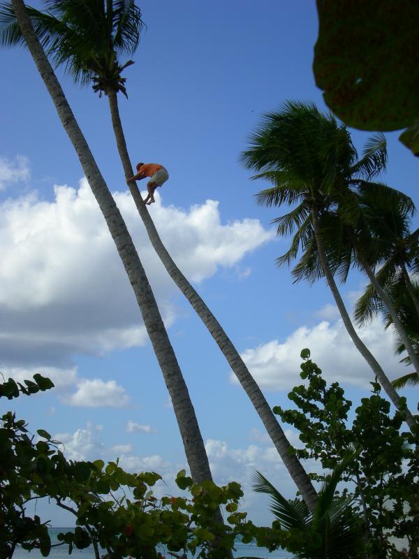 Cosa visitare a Santo Domingo - La Romana-dscn1309-jpg