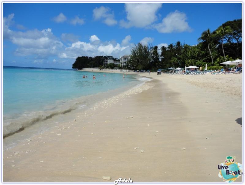 Cosa visitare a Barbados-barbados-2-jpg