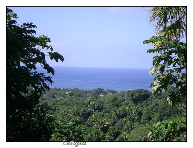 Roatan - Honduras-dscn4794-jpg
