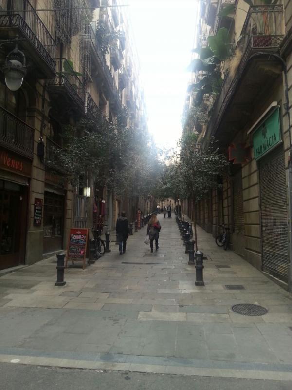 2014/12/08 Barcellona Costa Diadema-barcellona-escursione-costa-diadema-28-jpg