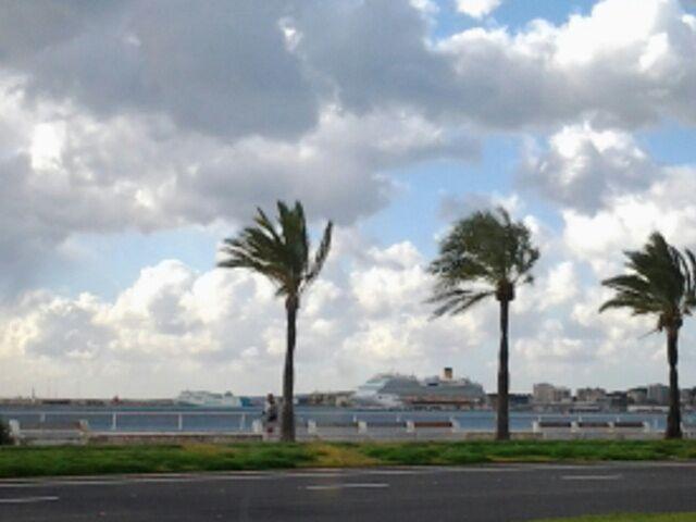 2014/12/09 Palma De Mallorca Costa Diadema-palmadimajorca-diretta-nave-liveboat-8-jpg