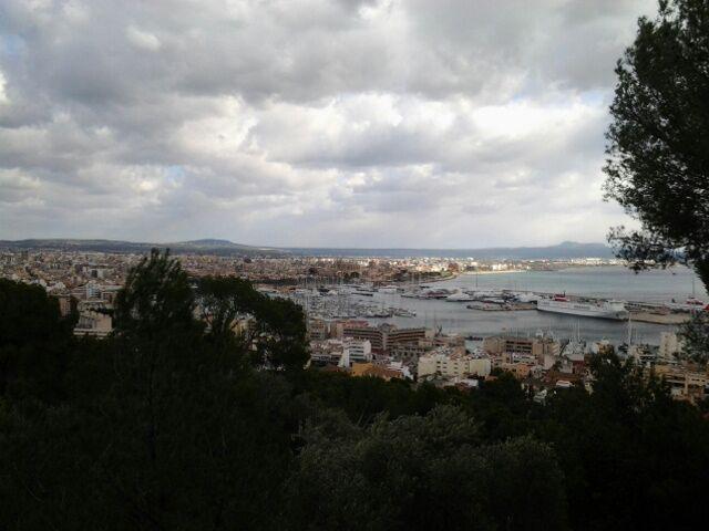 2014/12/09 Palma De Mallorca Costa Diadema-palmadimajorca-diretta-nave-liveboat-16-jpg