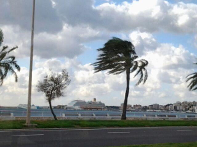 2014/12/09 Palma De Mallorca Costa Diadema-palmadimajorca-diretta-nave-liveboat-18-jpg