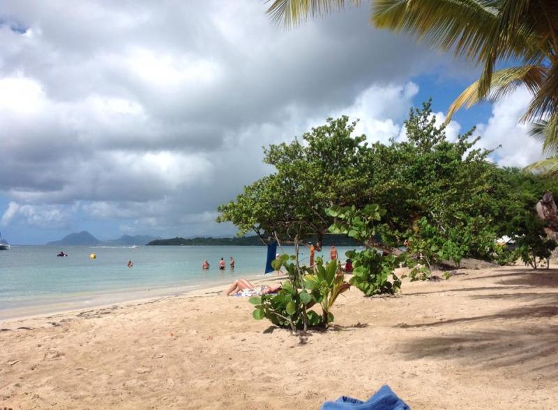 2014/12/11 Martinica, Costa Fortuna-martinica-jpg