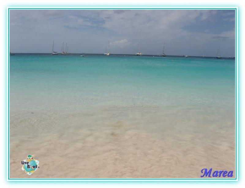 Cosa visitare a Barbados-image00006-jpg