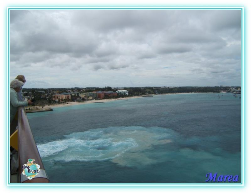 Cosa visitare a Nassau -Bahamas--image00005-jpg