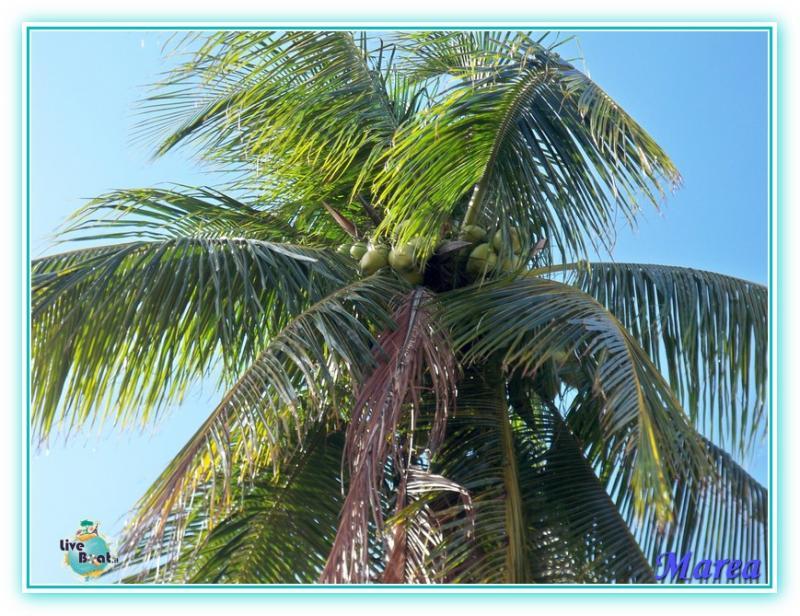 Costa Pacifica Traversata Gran Rio del Sole 28/11-17/12-costa-pacifica-2011-576-jpg