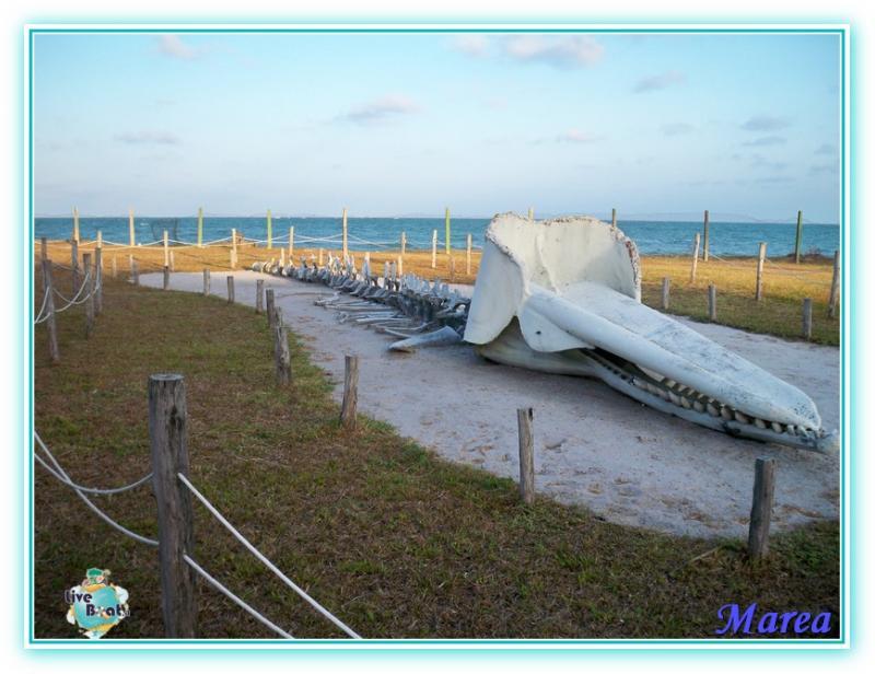Costa Pacifica Traversata Gran Rio del Sole 28/11-17/12-costa-pacifica-2011-613-jpg