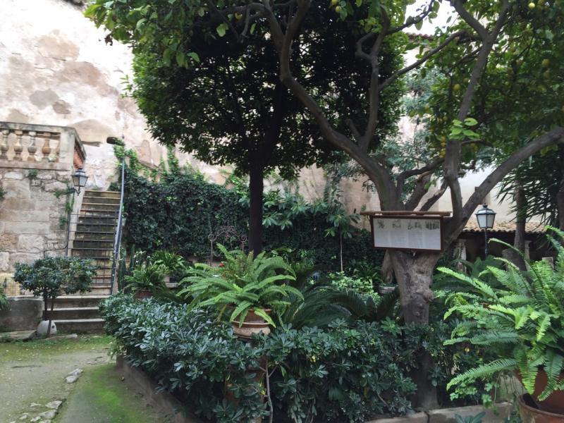 2015/01/06 Palma di Maiorca Costa Diadema-uploadfromtaptalk1420556390224-jpg