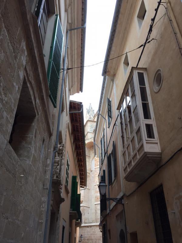 2015/01/06 Palma di Maiorca Costa Diadema-uploadfromtaptalk1420556607167-jpg