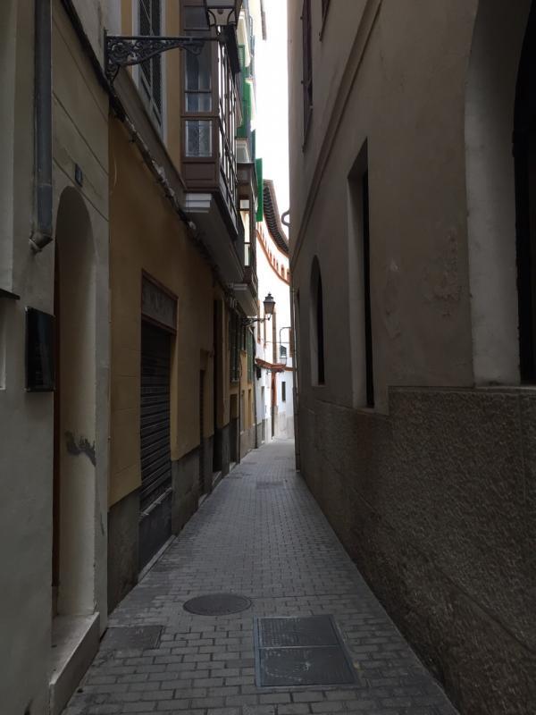 2015/01/06 Palma di Maiorca Costa Diadema-uploadfromtaptalk1420557618799-jpg