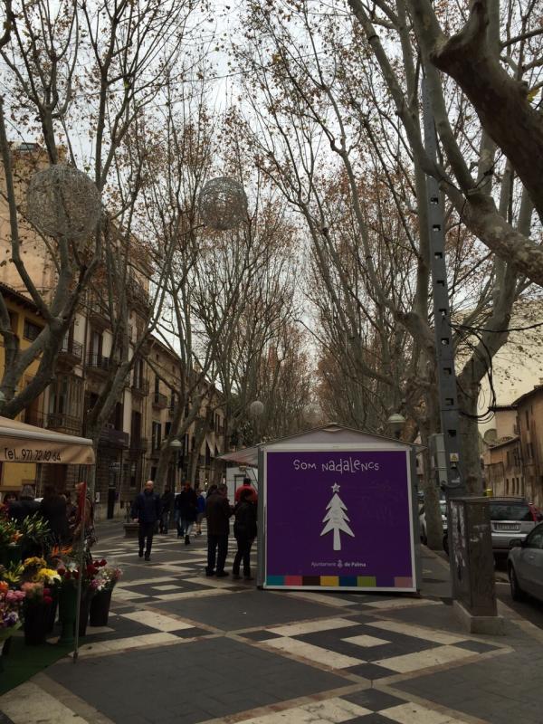 2015/01/06 Palma di Maiorca Costa Diadema-uploadfromtaptalk1420557656462-jpg