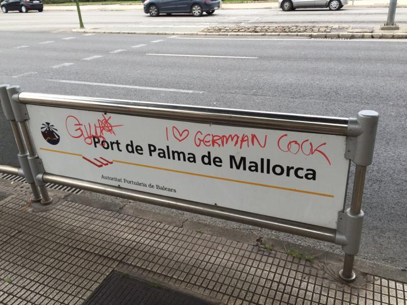 2015/01/06 Palma di Maiorca Costa Diadema-uploadfromtaptalk1420558318672-jpg