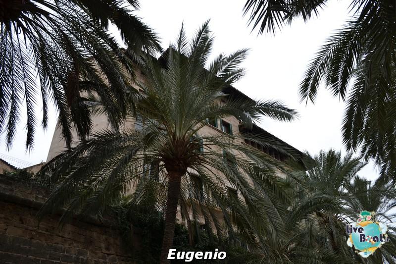 2015/01/06 Palma di Maiorca Costa Diadema-dsc_0132-jpg