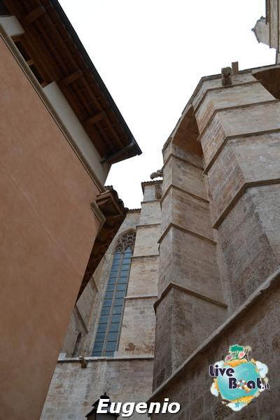 2015/01/06 Palma di Maiorca Costa Diadema-dsc_0172-jpg