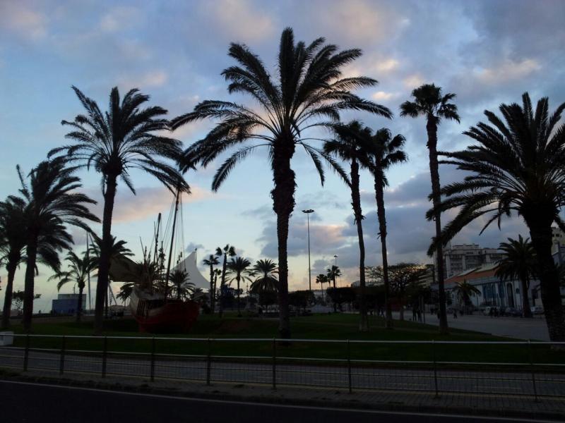 2015/01/17 - Las Palmas / Gran Canaria (Imbarco) - MSC Armonia-uploadfromtaptalk1421527054093-jpg