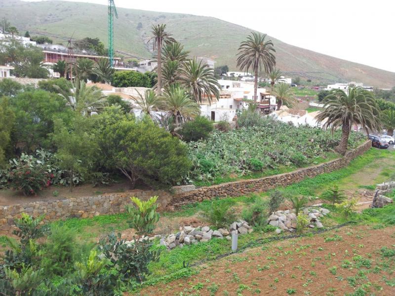 2015/01/18 - Puerto Del Rosario / Fuerteventura - MSC Armonia-uploadfromtaptalk1421608856785-jpg